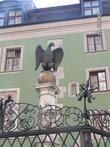 Злобный орёл