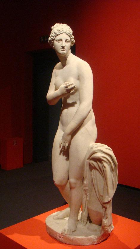 Венера с выставки
