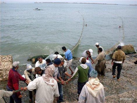 Александрия. Морская рыбалка