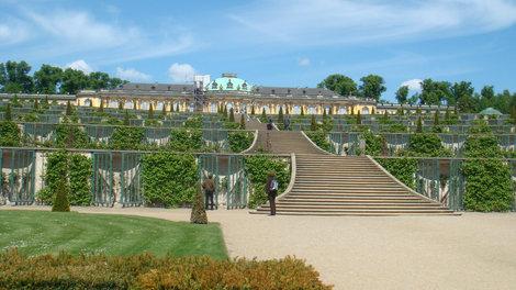 Собстсвенно дворец Сан-Суси и виноградники