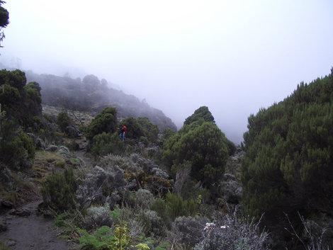 Арчовник. Второй день пути. Традиционный послеобеденный туман