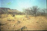 Южная Ангола. Сухой сезон