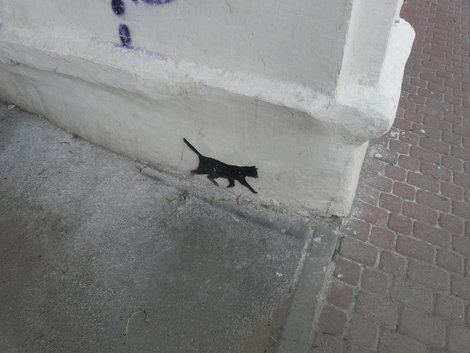 Нижегородская кошка (рисунок!)