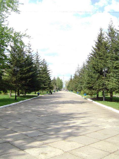 Рыбинск. Аллея Славы тянется от оживленной улицы Крестовой к Вечному огню