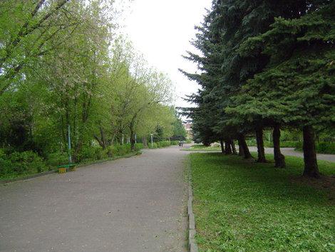 Рыбинск удивительно зеленый город. Волжский парк