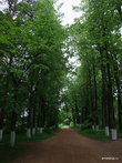 Яранск. Городской сад