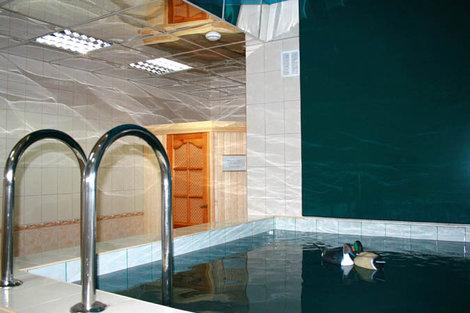 фото  Бассейн с уточками в бане.