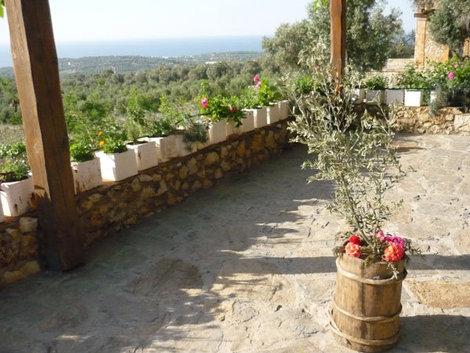 Ферма Agreco на Крите — настоящий оазис