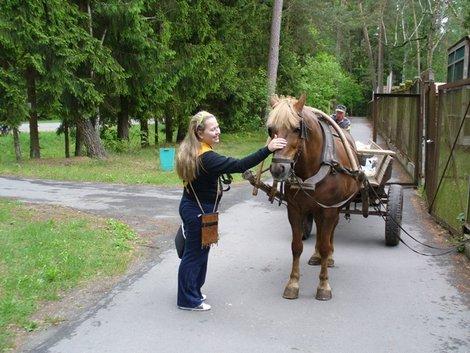 10. Анна гладит лошадь