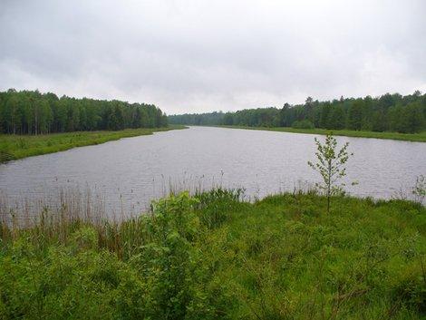 29. Лядское озеро