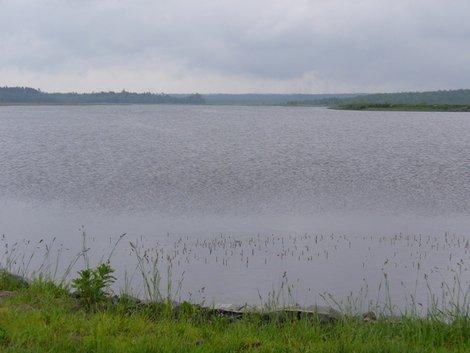 31. Лядское озеро