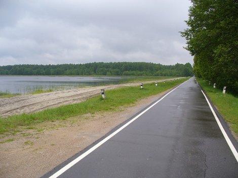 34. Вот такие, уходящие вдаль дороги проложены по Беловежской пуще. Бесконечные и маняшие.