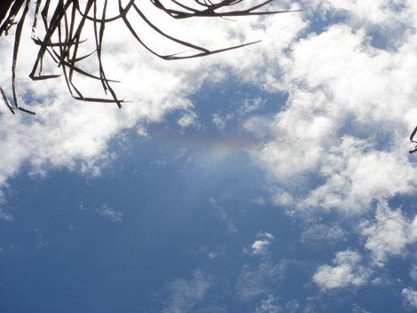 Светлым, жарким днем без дождя в небе появилась радуга