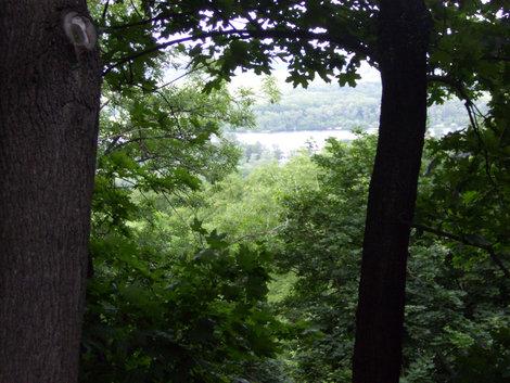 Вид из парка