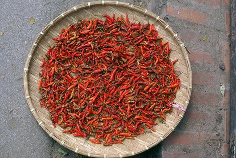Сушится красный перец