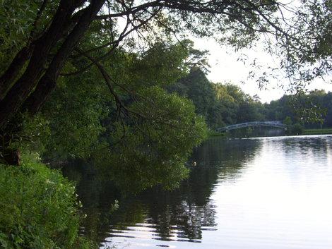 Дом отдыха: пруд