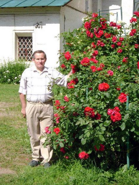 Российская Палестина сегодня — это цветущий сад
