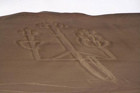 Тот самый рисунок на земле..  Предтеча — линий в пустыне Наска..