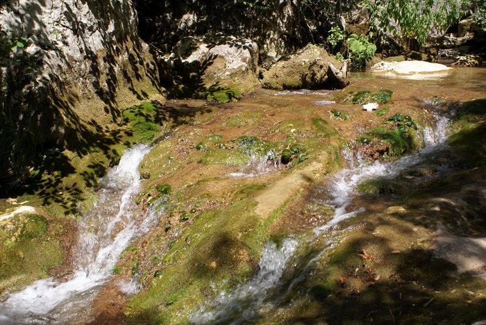 Вода, камень и зеленые водоросли