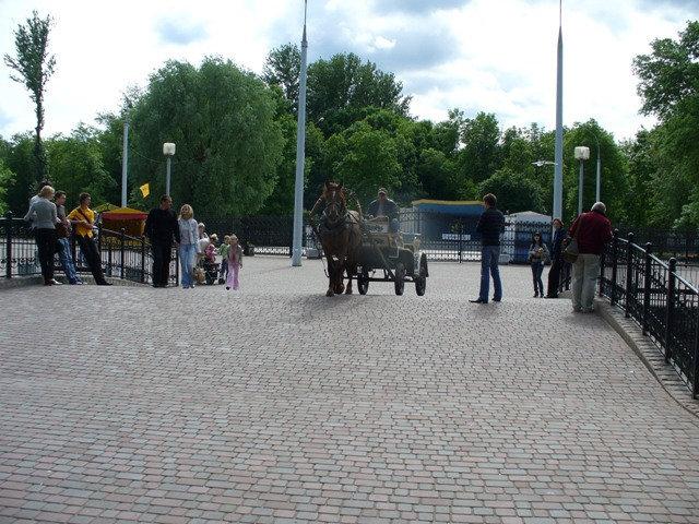 Весело скачет по дорожкам парка одна лошадиная сила