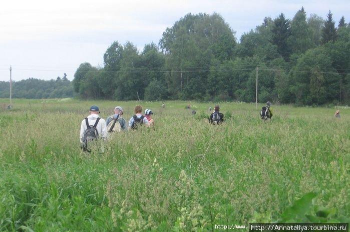 Такими полями и лесами мы шли по маршруту!