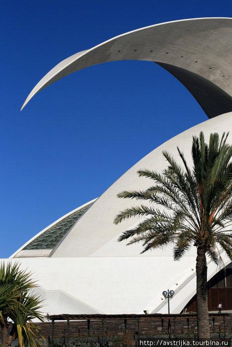 концертный зал в Санта-Крус-де-Тенерифе