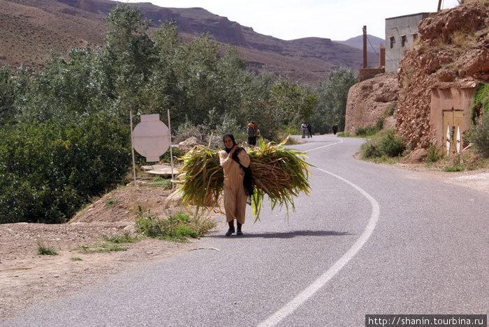 Женщина с травой