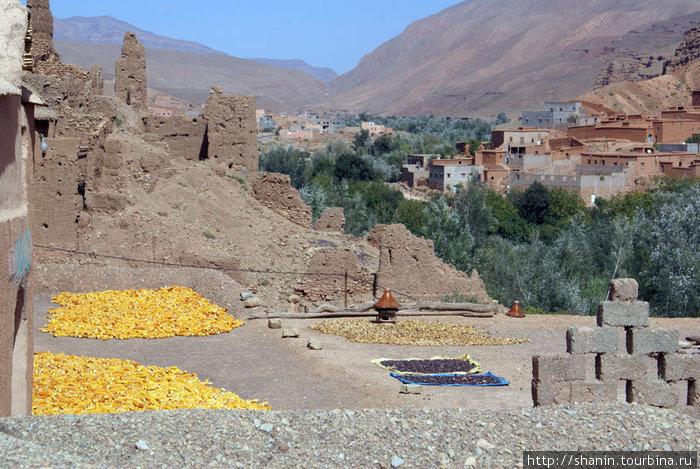 Сушится кукуруза — во внутреннем дворике крестьянского дома