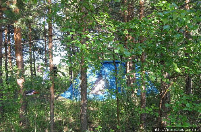 Мой дом в лесу на острове