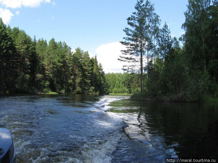Речка Терёха