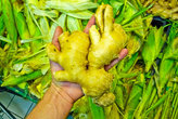 Китайские старички могут часами стоять возле ящиков с овощами и выбирать из тысяч ту единственную морковку или картошку...
