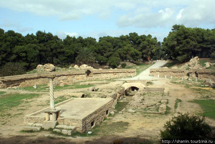 Руины стадиона в Карфагене