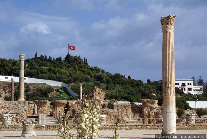 Руины римских бань в Карфагене