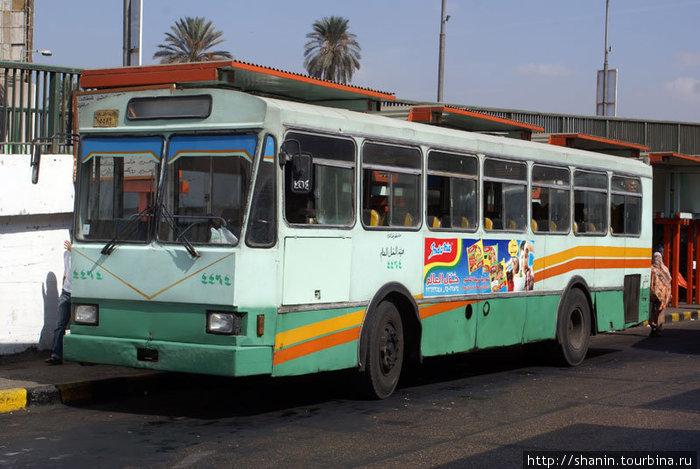 Каирский городской автобус