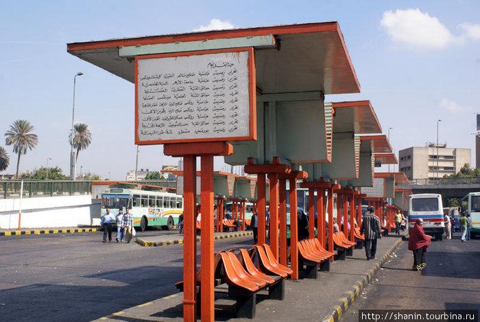 Автобусная остановка в центре Каира