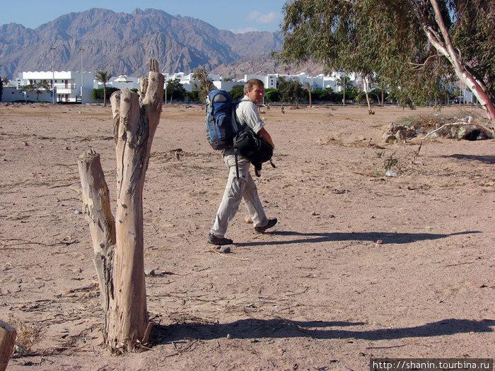 Короткая дорога на автовокзал в Дахабе — через пустыню