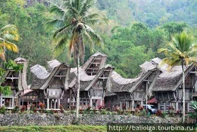 традиционные дома Тораджи — «тонгконаны»