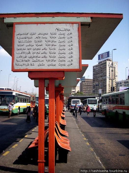 Автобусная станция в Каире, здесь никто не сидит, тут в цене активная жизненная позиция, иначе никогда не уедешь!