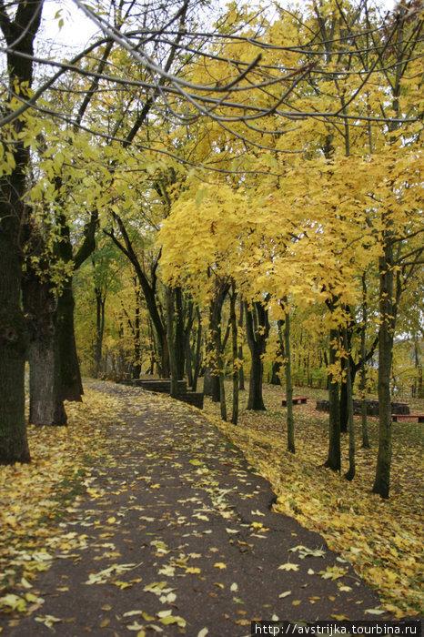 осень в Темном саду