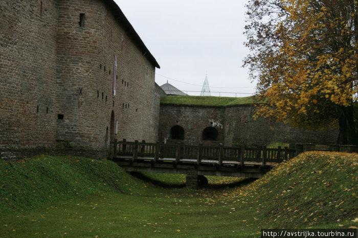 осень и стены Нарвского замка