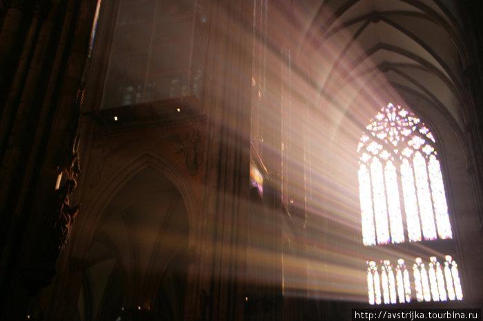 волшебный свет сквозь витражи Кельнского собора
