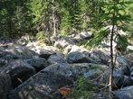 Каменные реки из гигантских валунов — типичная черта таганайского ландшафта. По ним очень прикольно прыгать!