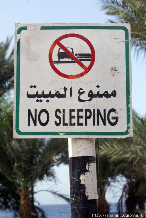 Не спать! На набережной Акабы