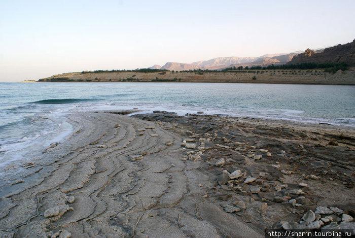 Берег Мертвого моря на рассвете