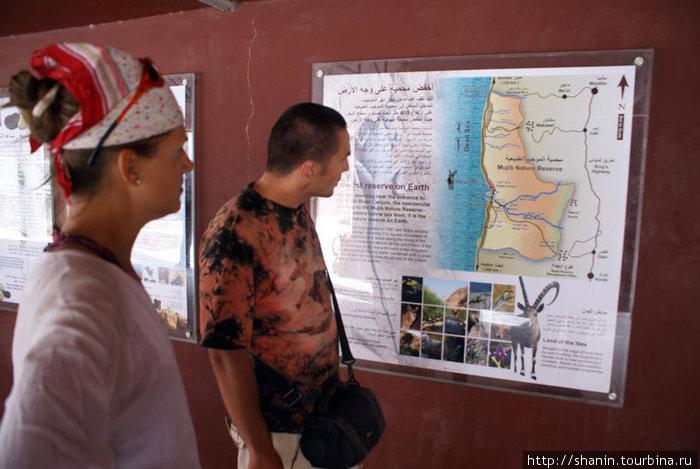 У карты заповедника Вади Муджиб