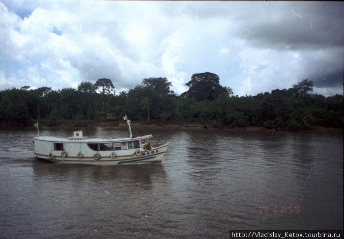 На пароходе идём по дельте Амазонки.