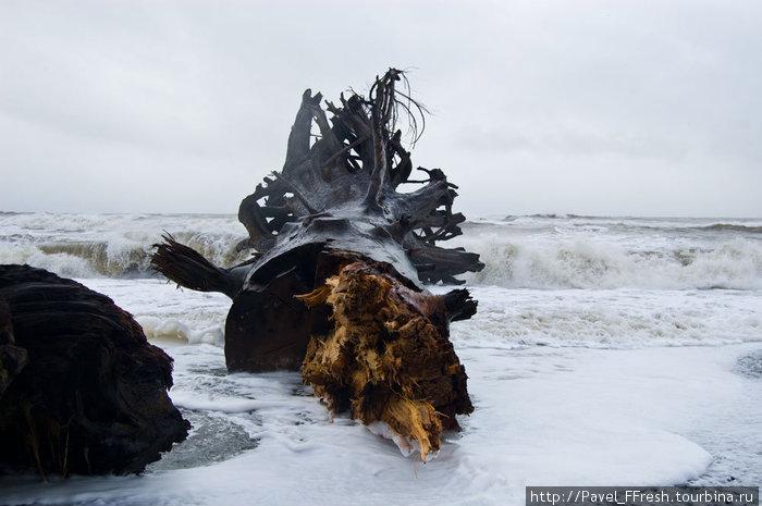 Представить только силу, которая притащила этого гиганта на пляж. Тут супермер скромно стоит в сторонке, на крыльце, укрываясь от дождя и покуривая свой криптонит.