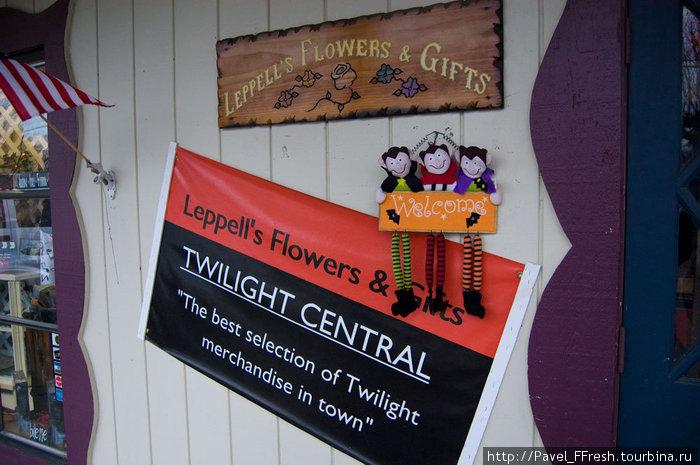 Прямо напротив школы располагается еще один сувенирный магазин. Особенность его в том, что раньше это была цветочная лавка.