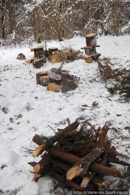 Утром мы принялись за заготовку дров