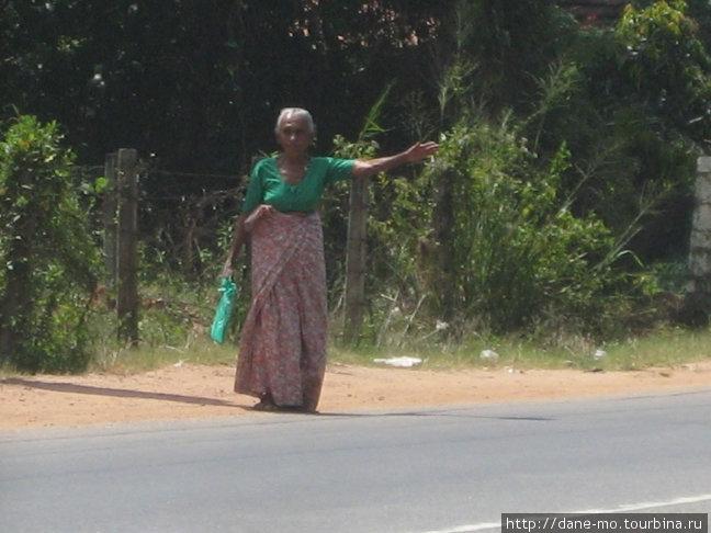 Сначала я подумал, что эта женщина пытается уехать автостопом...